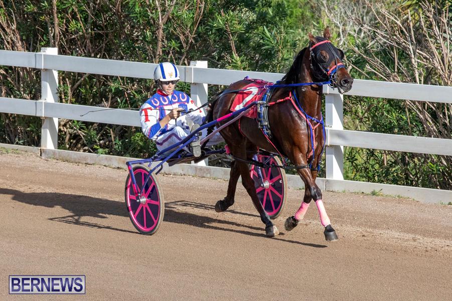 DHPC-Harness-Pony-Racing-Bermuda-December-26-2019-6092