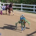 DHPC Harness Pony Racing Bermuda, December 26 2019-6094