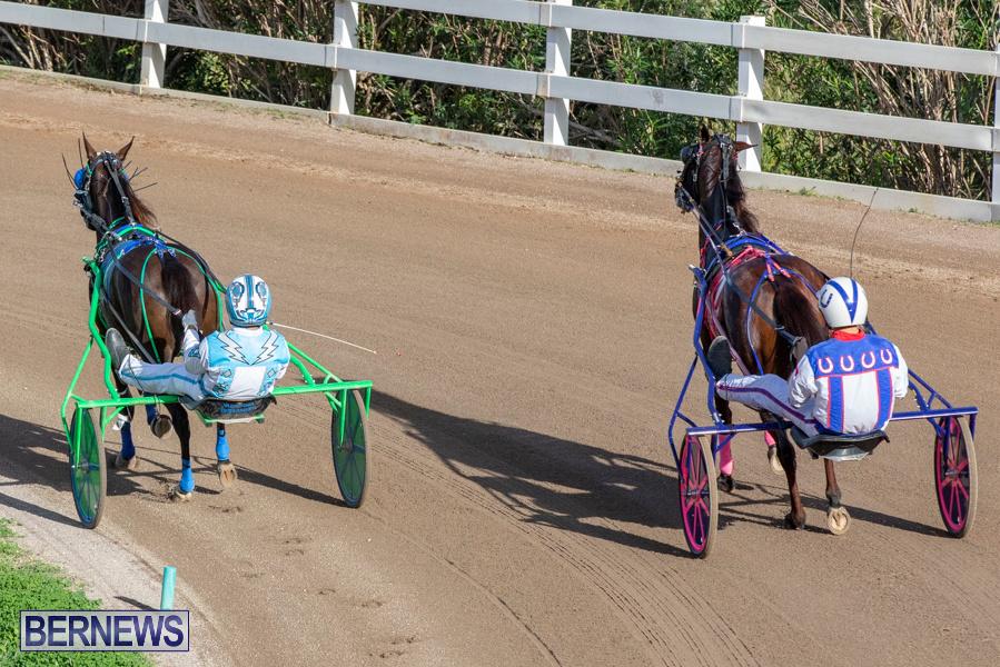 DHPC-Harness-Pony-Racing-Bermuda-December-26-2019-6115