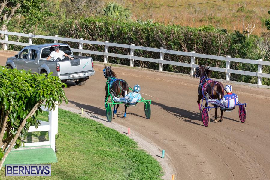 DHPC-Harness-Pony-Racing-Bermuda-December-26-2019-6116