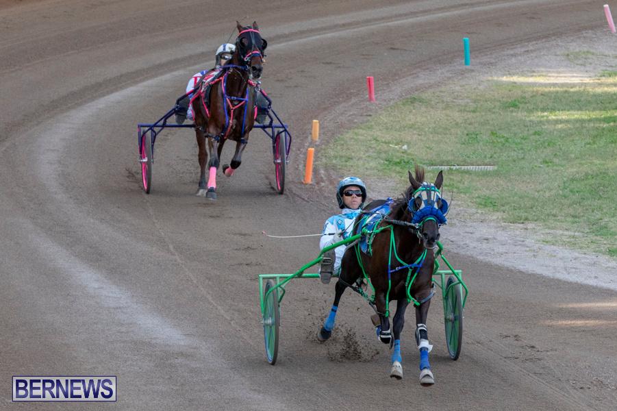 DHPC-Harness-Pony-Racing-Bermuda-December-26-2019-6120