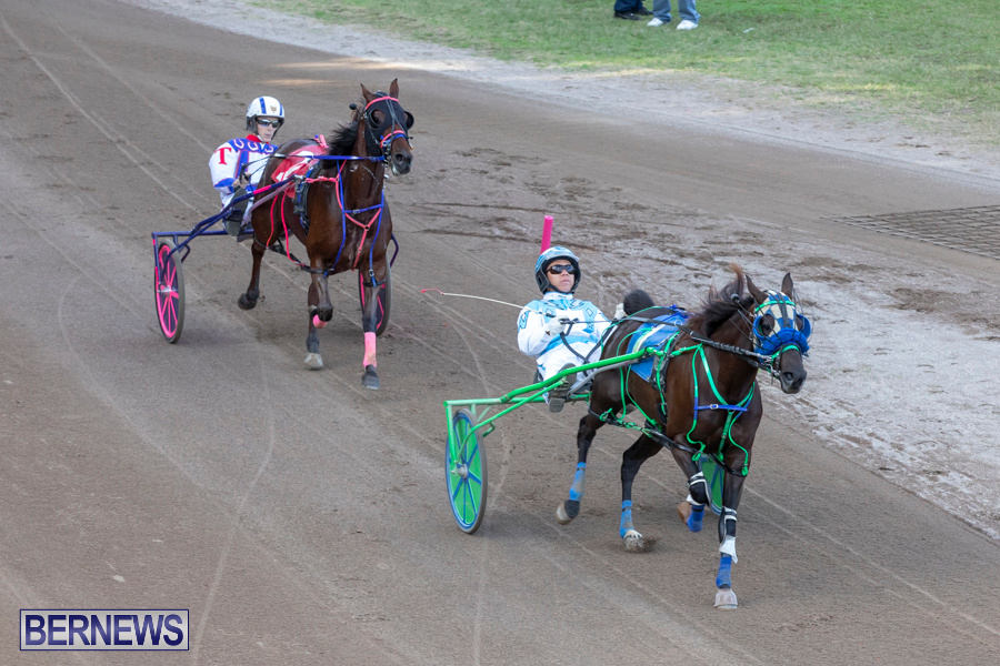 DHPC-Harness-Pony-Racing-Bermuda-December-26-2019-6128