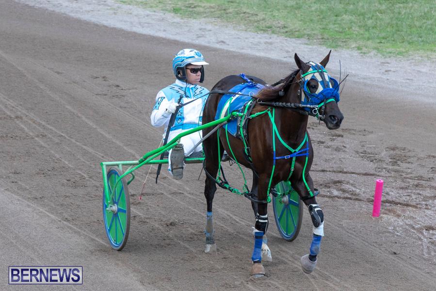 DHPC-Harness-Pony-Racing-Bermuda-December-26-2019-6141