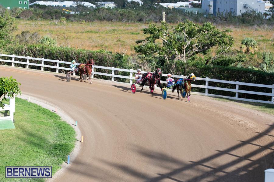 DHPC-Harness-Pony-Racing-Bermuda-December-26-2019-6152