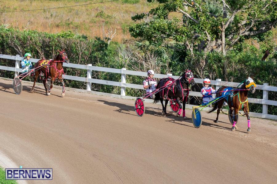 DHPC-Harness-Pony-Racing-Bermuda-December-26-2019-6153