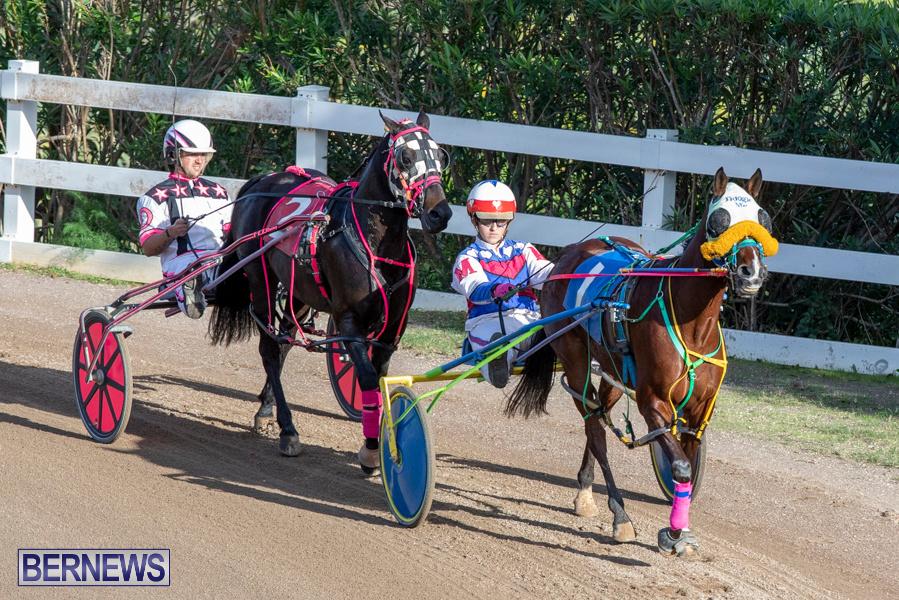 DHPC-Harness-Pony-Racing-Bermuda-December-26-2019-6154