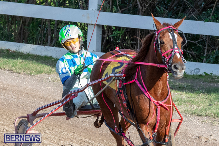 DHPC-Harness-Pony-Racing-Bermuda-December-26-2019-6158