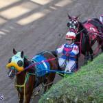 DHPC Harness Pony Racing Bermuda, December 26 2019-6160