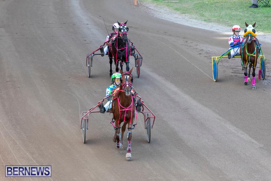 DHPC-Harness-Pony-Racing-Bermuda-December-26-2019-6164