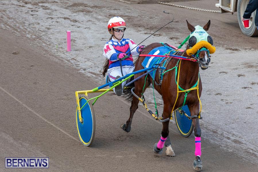 DHPC-Harness-Pony-Racing-Bermuda-December-26-2019-6166