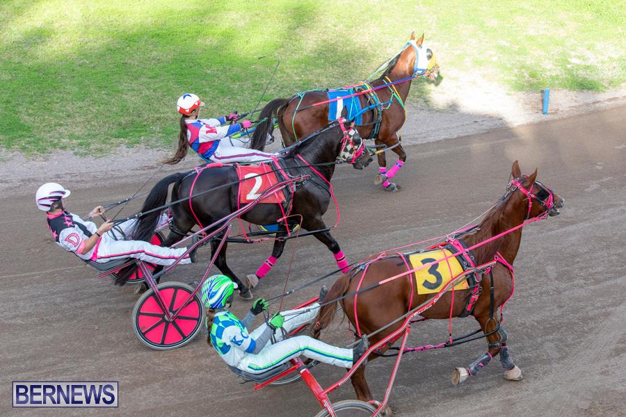 DHPC-Harness-Pony-Racing-Bermuda-December-26-2019-6171