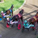 DHPC Harness Pony Racing Bermuda, December 26 2019-6173