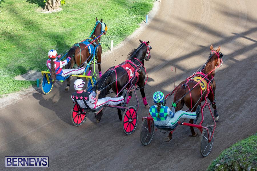 DHPC-Harness-Pony-Racing-Bermuda-December-26-2019-6173