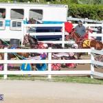 DHPC Harness Pony Racing Bermuda, December 26 2019-6178