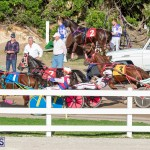 DHPC Harness Pony Racing Bermuda, December 26 2019-6180