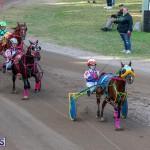 DHPC Harness Pony Racing Bermuda, December 26 2019-6189