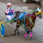 DHPC Harness Pony Racing Bermuda, December 26 2019-6190
