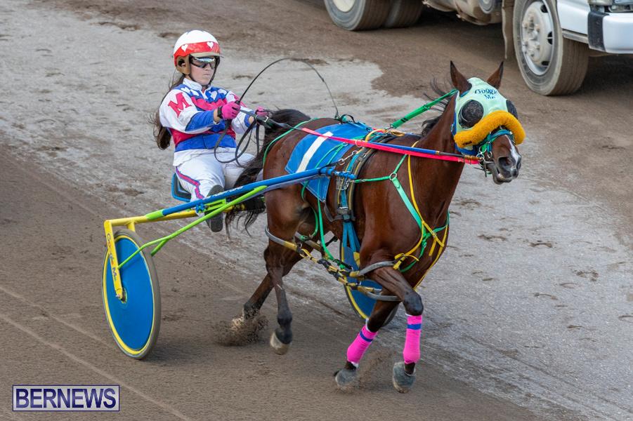 DHPC-Harness-Pony-Racing-Bermuda-December-26-2019-6190