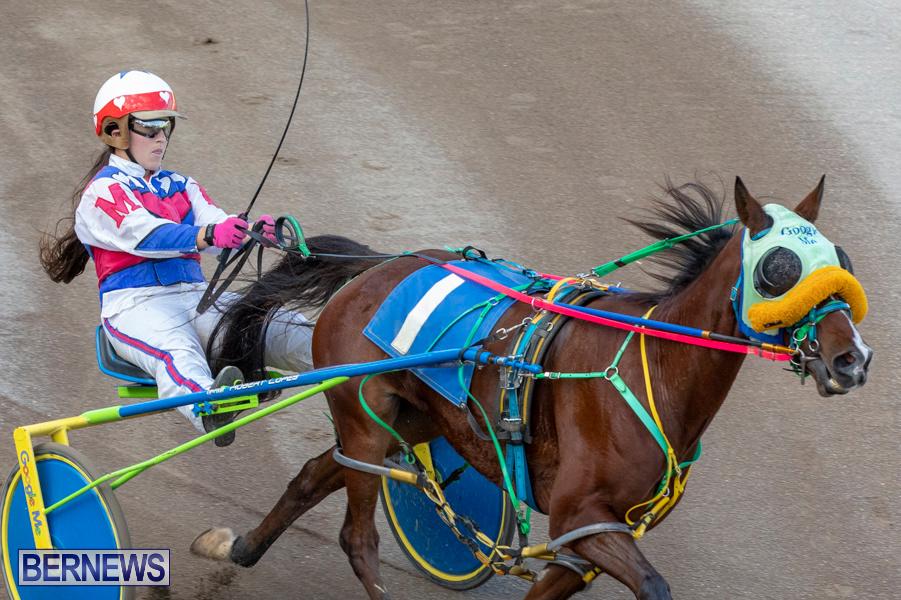 DHPC-Harness-Pony-Racing-Bermuda-December-26-2019-6191