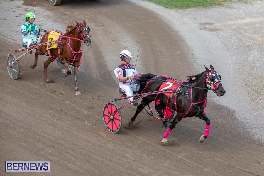 DHPC-Harness-Pony-Racing-Bermuda-December-26-2019-6193