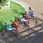 DHPC Harness Pony Racing Bermuda, December 26 2019-6197