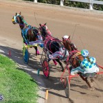 DHPC Harness Pony Racing Bermuda, December 26 2019-6199