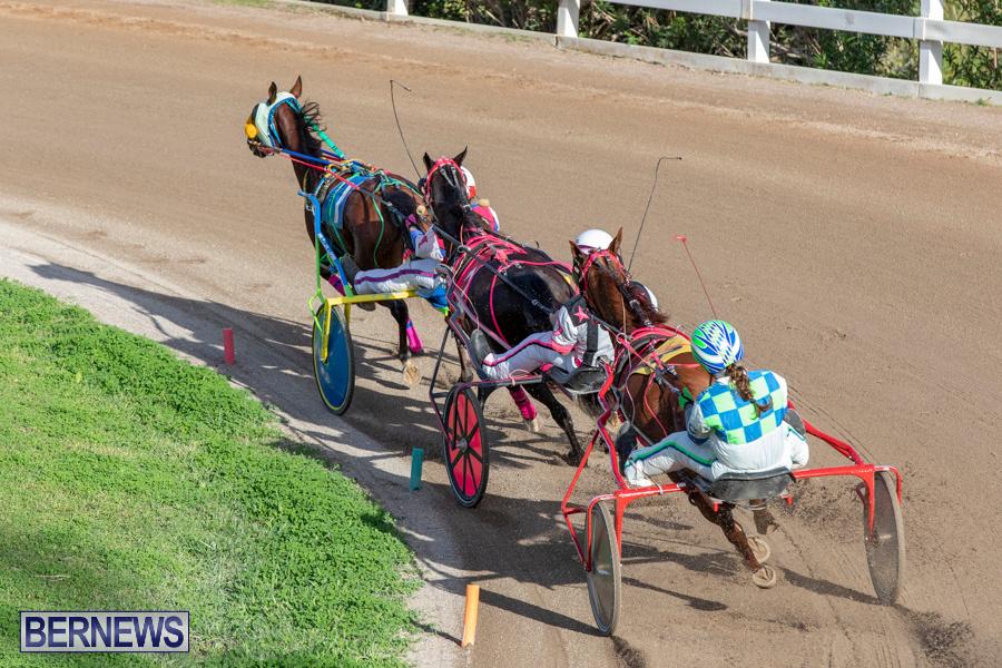 DHPC-Harness-Pony-Racing-Bermuda-December-26-2019-6199