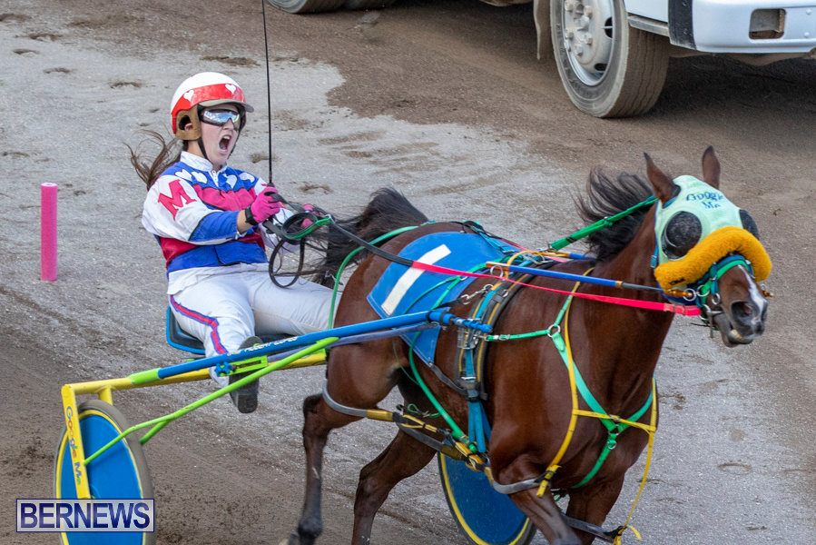 DHPC-Harness-Pony-Racing-Bermuda-December-26-2019-6214