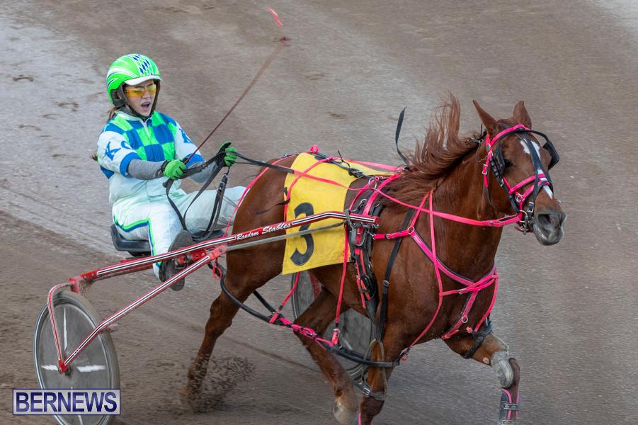 DHPC-Harness-Pony-Racing-Bermuda-December-26-2019-6217