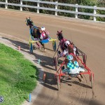 DHPC Harness Pony Racing Bermuda, December 26 2019-6251
