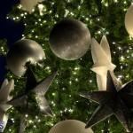 Fairmont Southampton Christmas Tree Lighting Bermuda, December 8 2019-3291