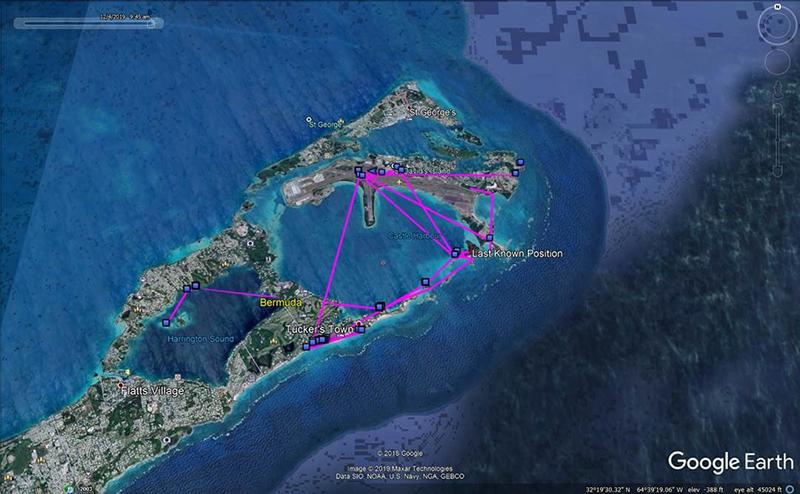 Falcon Rehabilitation Bermuda Dec 17 2019 (1)