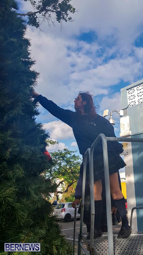 Hamilton Christmas Tree Decorating Bermuda, December 6 2019-07-6