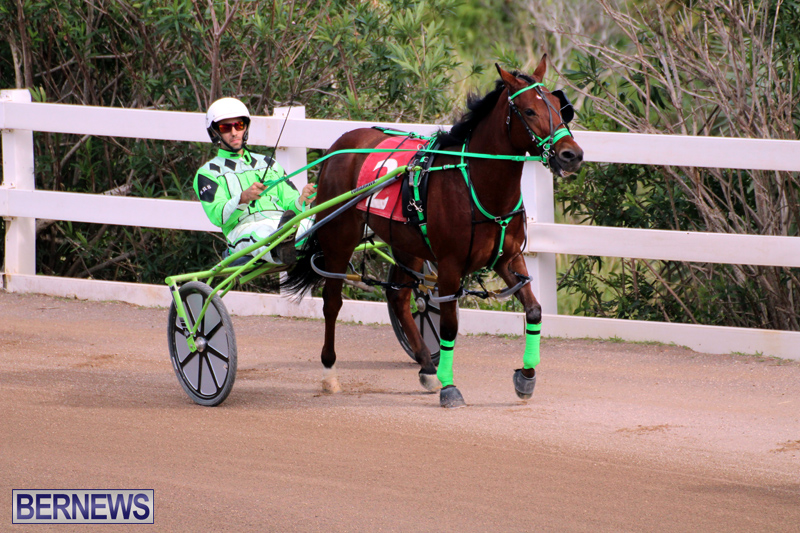 Bermuda-Harness-Pony-Racing-Jan-19-2020-1