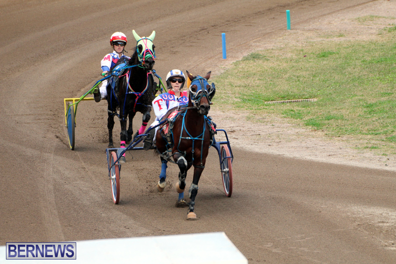 Bermuda-Harness-Pony-Racing-Jan-19-2020-10