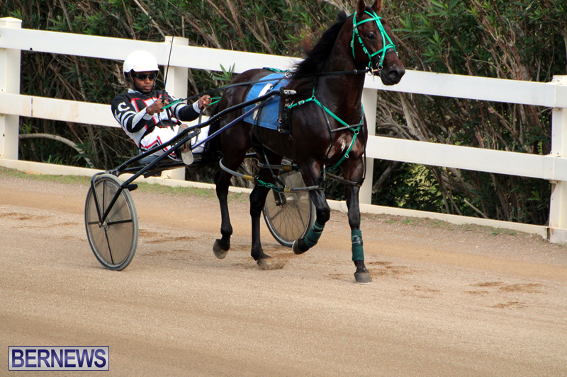 Bermuda-Harness-Pony-Racing-Jan-19-2020-11