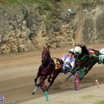 Bermuda Harness Pony Racing Jan 19 2020 (12)