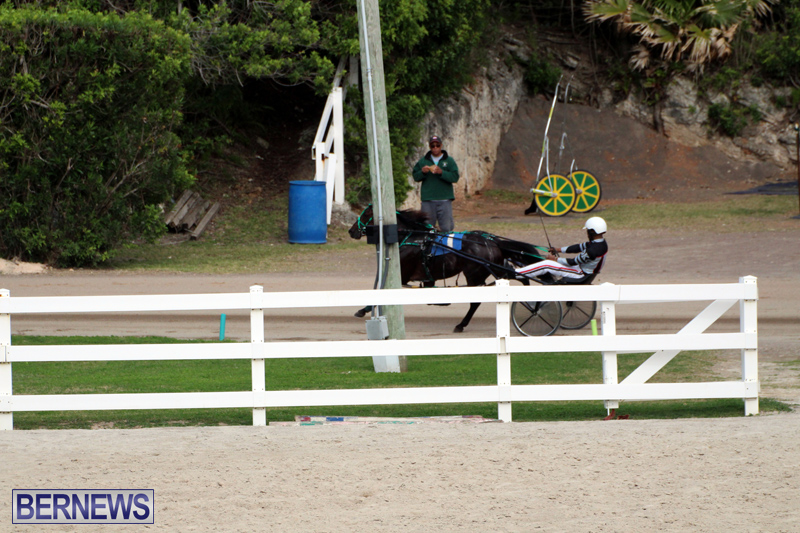 Bermuda-Harness-Pony-Racing-Jan-19-2020-13