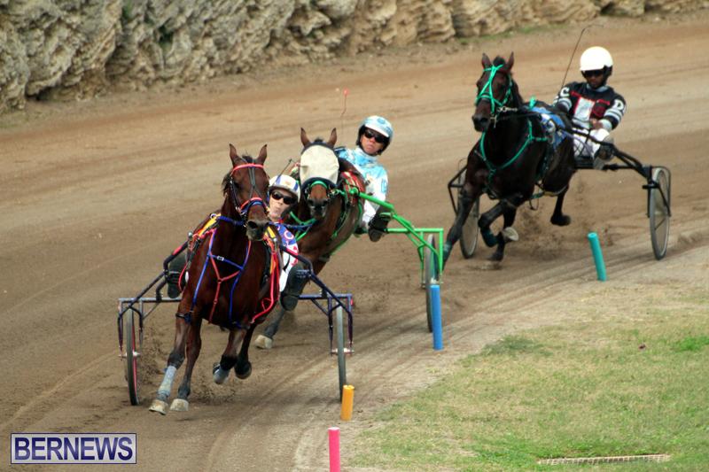 Bermuda-Harness-Pony-Racing-Jan-19-2020-14