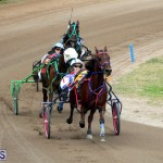 Bermuda Harness Pony Racing Jan 19 2020 (15)