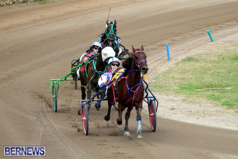 Bermuda-Harness-Pony-Racing-Jan-19-2020-15