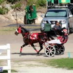 Bermuda Harness Pony Racing Jan 19 2020 (17)