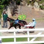 Bermuda Harness Pony Racing Jan 19 2020 (18)