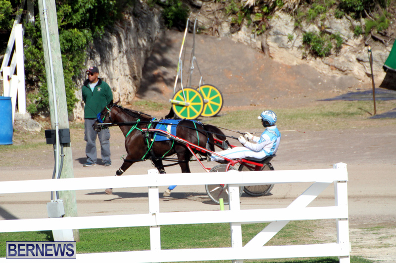 Bermuda-Harness-Pony-Racing-Jan-19-2020-18