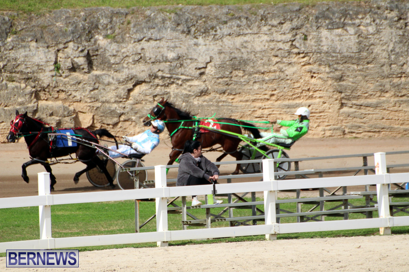 Bermuda-Harness-Pony-Racing-Jan-19-2020-2
