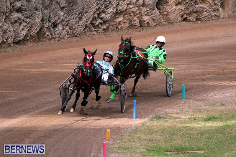 Bermuda-Harness-Pony-Racing-Jan-19-2020-5