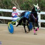 Bermuda Harness Pony Racing Jan 19 2020 (7)