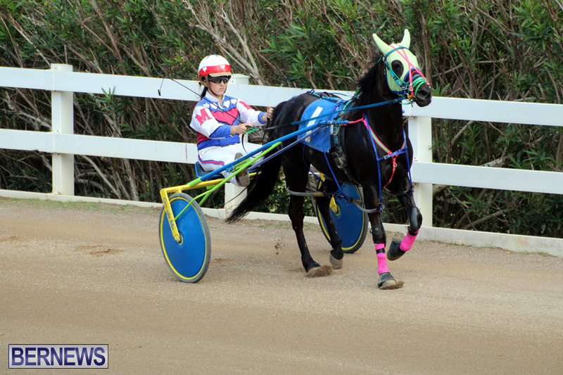 Bermuda-Harness-Pony-Racing-Jan-19-2020-7