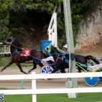 Bermuda Harness Pony Racing Jan 19 2020 (9)
