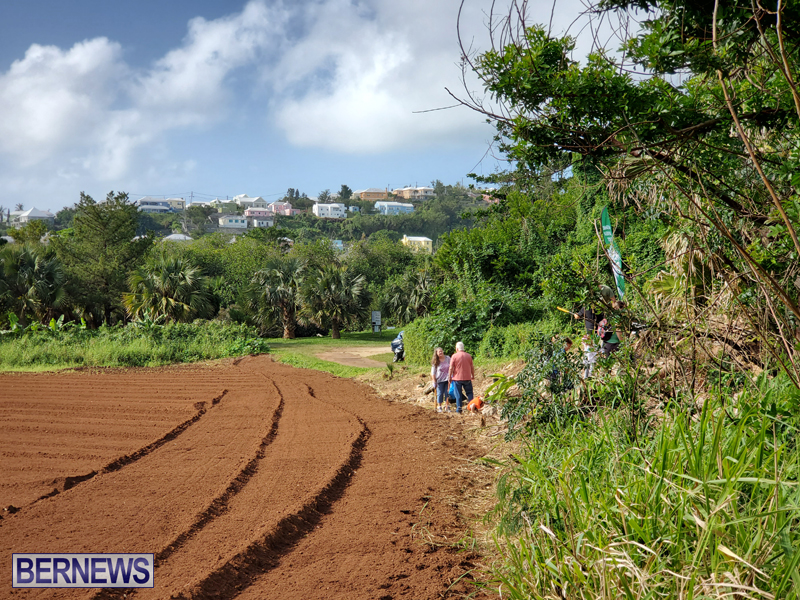Bermuda National Trust tree planting Jan 2020 (4)